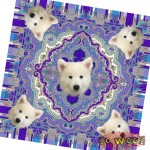 Pets Dogs Cats Portrait Purple Customized Retro Ethnic Silky Scarf