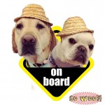 Pets On Board Personalized Bumper Window Sticker for Your Dog Cat Bird Fish Rabbit Snake with Photos