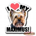 I LOVE MY PETS Dogs Cats Personalized Bumper Window Sticker with Photos Portrait