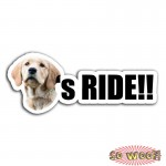 Pet Dogs Cats RIDE Personalized Bumper Window Sticker with Photos Portrait